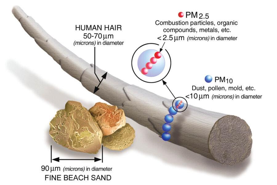 Ilustracija poredjenja PM10 i PM2.5 čestica u odnosu na vlas kose